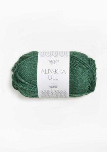 Sandnes Garn - Alpakka Ull - 8063 - Mork-gronn