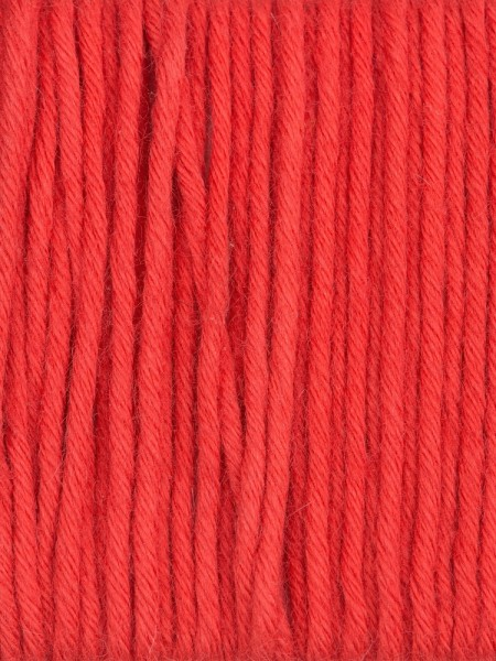 Gedifra Cuor Di Cotone 120 - 01074